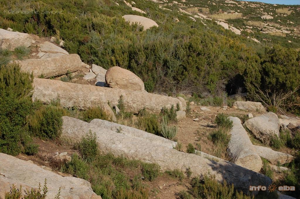 Il granito dell 39 elba for Antiche ricette romane