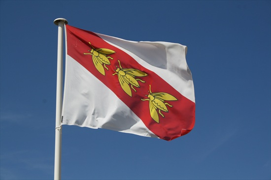 m_bandiera-napoleonica-bandiera-isola-el