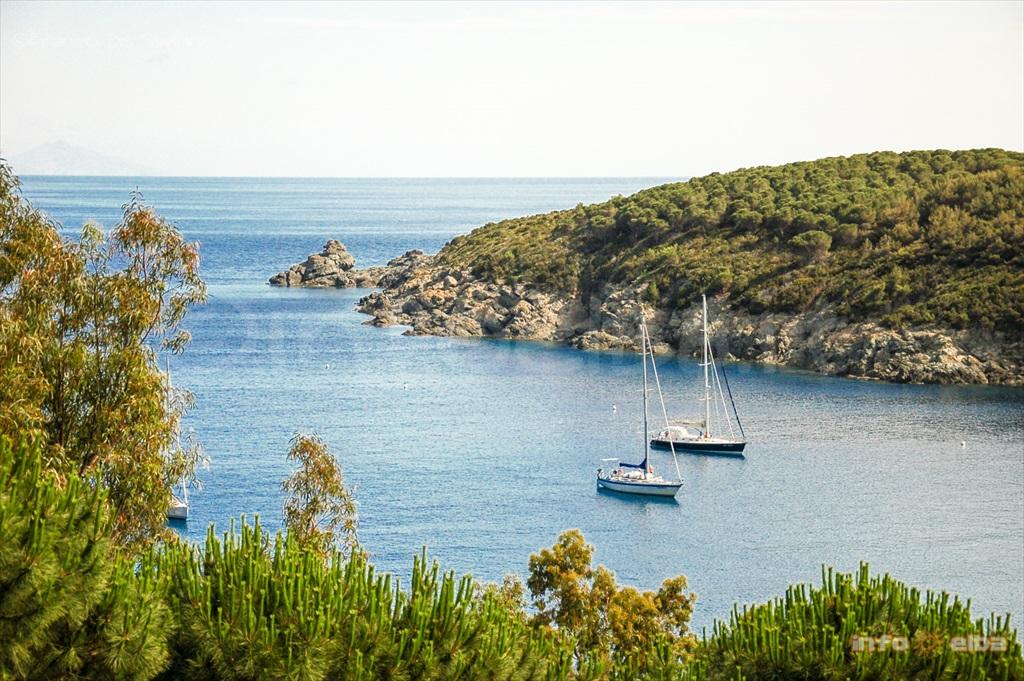 Isola d\'Elba: guida informazioni vacanze e turismo