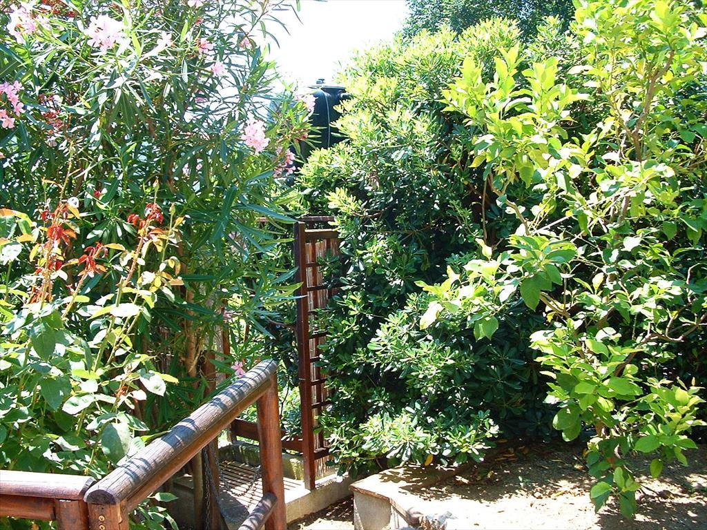 Casa fattorini all 39 isola d 39 elba a marina di campo loc castiglione appartamenti elba - Doccia esterna giardino ...